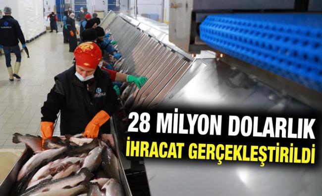 Rize'den Balık İhracatı Salgından Etkilenmedi