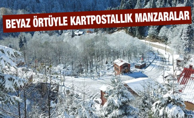 Rize ve Artvin'in Yüksek Kesimlerinde Kar Etkili Oluyor