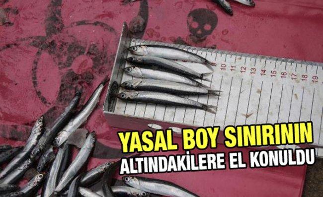 Rize'de Kısıtlamada 'Balık Boyu' Denetimleri Yapıldı