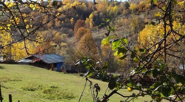 Karadeniz'de Havalar Soğudu, Köyler Sessizleşti