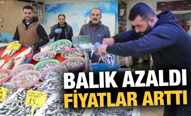Balık Azlığı, Fiyatlara Yansıyor