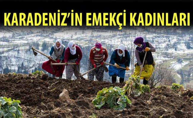 Karadeniz'in Çalışkan Kadınları Tempo Düşürmüyor