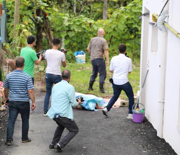 Rize'de kaçan kurbanlıklar ortalığı birbirine kattı: 2 yaralı