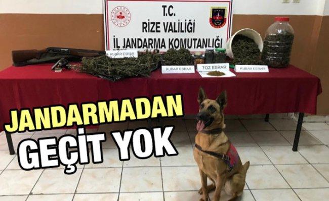 Rize'de Jandarma Ekipleri Suçlulara Göz Açtırmıyor