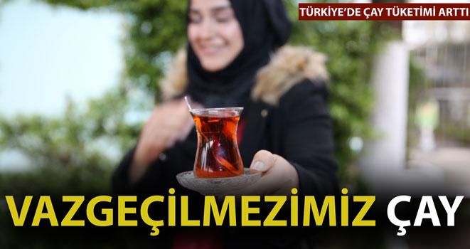 Türkiye`de Çay Tüketimi Arttı