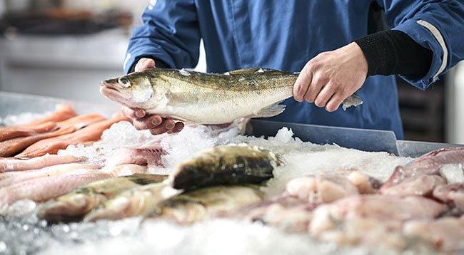 Balık Her Yaşta Balık Tüketilmeli