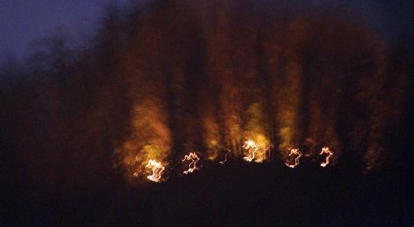 Orman Yangınında 10 Dönüm Alan Zarara Gördü