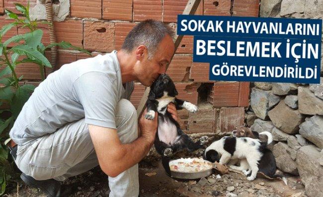 Sokak Hayvanlarına Bakma Cezası Aldı
