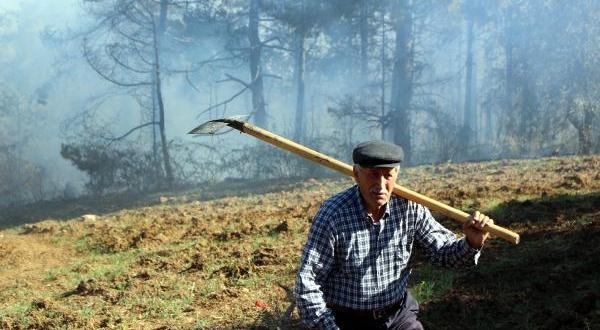 Orman Yangınında 10 Dönümlük Alan Zarar Gördü