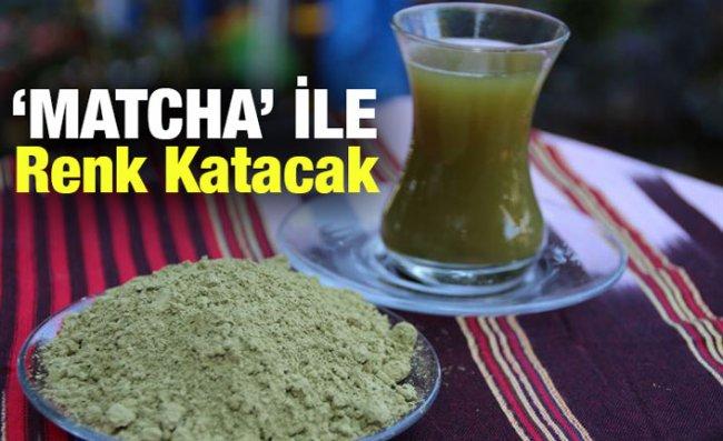 Çaykur 'Matcha' Çayı ile Yiyeceklere Renk Katacak
