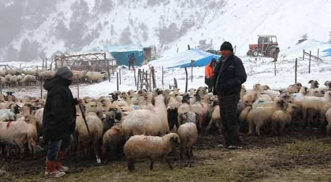 Kar Nedeniyle Yaylada Mahsur Kalan Aile Kurtarıldı