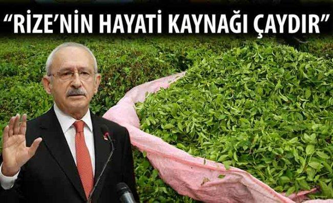 Kılıçdaroğlu: Kaçak Çayı Yakaladığınızda Yakacaksınız