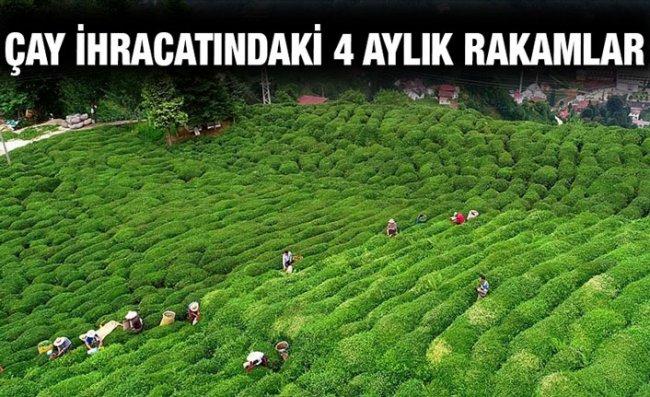 Türk Çayı İhracatı İlk 4 Ayda 5,2 Milyon Dolar Kazandırdı