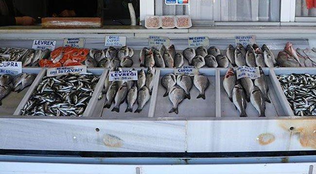 Balık Popülasyonunun Artması Bekleniyor