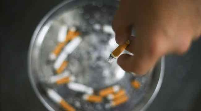 Sigara Dünya Genelinde Her Yıl 8 Milyon Can Alıyor