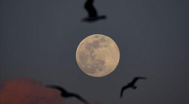 NASA 26 Ekim'de Ay Hakkında Yeni Bir Keşif Açıklayacak