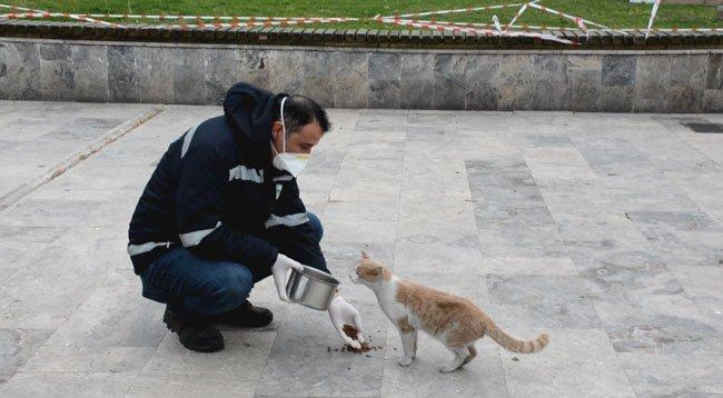 Ereğli'de Sokak Hayvanları Aç Kalmayacak
