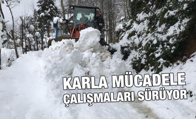 Rize'de Kar Yağışı Nedeniyle 43 Köy Yolu Ulaşıma Kapandı