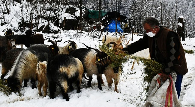Yaylacılar Kar Yağışı Üzerine Köylere Dönmeye Başladı