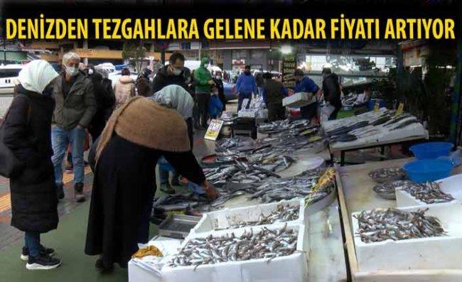 Hamsinin Fiyatı, Denizden Tezgaha Gelene Kadar Katlanıyor