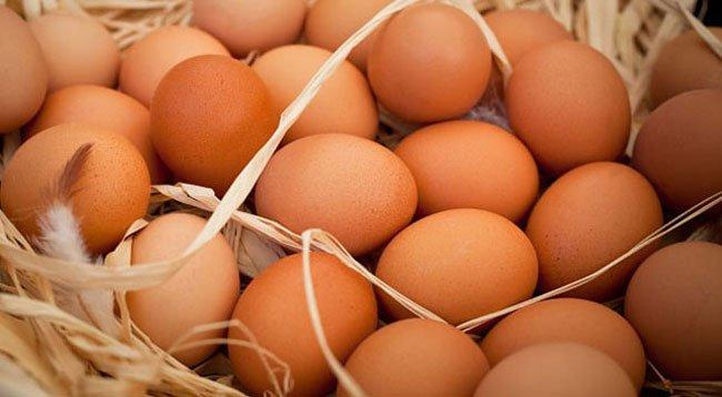 Organik Yumurtayı Ayırt Etme Yolları