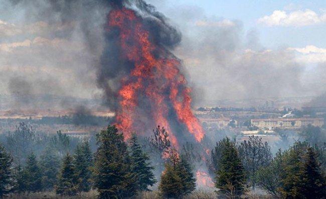 Atatürk Orman Çiftliği'ndeki yangın soruşturmasında jet iddianame