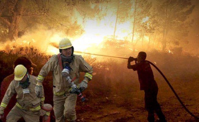 OGM: 5 ildeki 14 yangını kontrol altına alma çalışmaları sürüyor