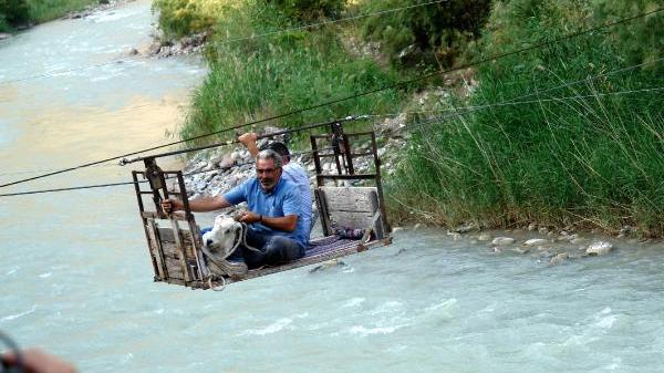 Kurbanlık keçiyi, Çoruh Nehri`nden ilkel teleferikle geçirdi