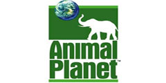 Animal Planet İzle